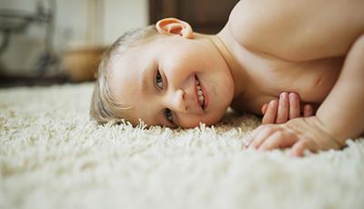 Jds Carpet Dry Cleaning